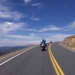 Dorit Brauer Road Trip